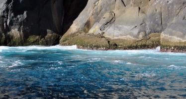 Psicobloc em Arraial do Cabo
