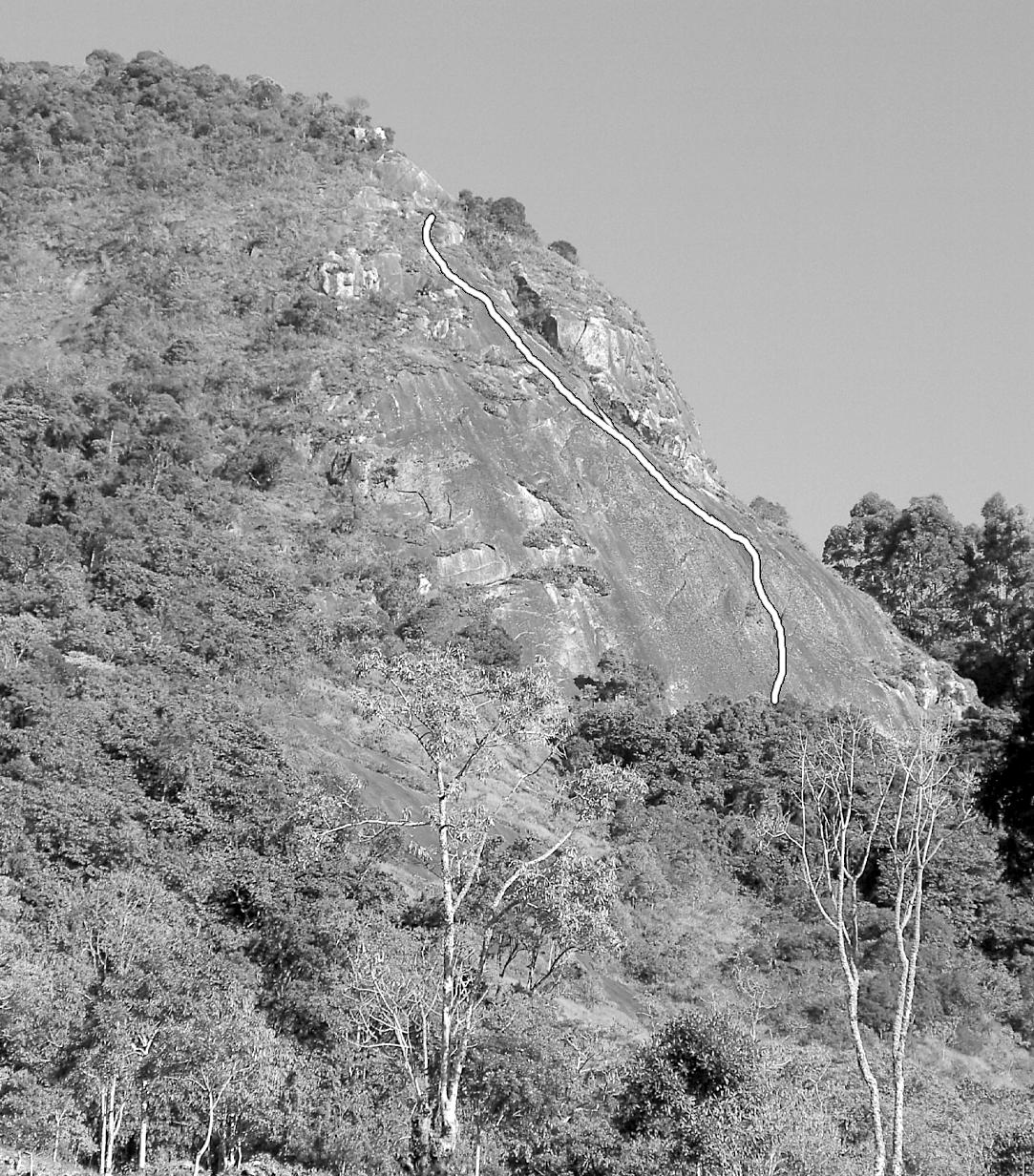 Tá na Hora do Cocoricó 4°VIsup